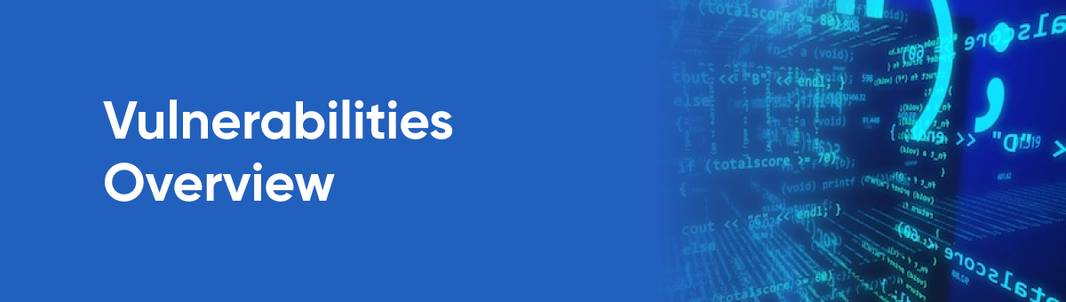 Vulnerabilities Overview