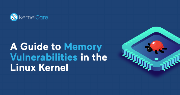 A Guide to Memory Vulnerabilities in the Linux Kernel