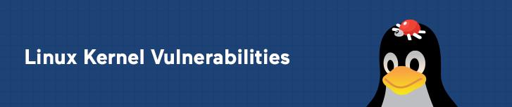 Linux Kernel Vulnerabilities