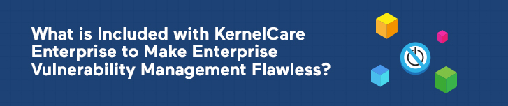 What is Included with KernelCare Enterprise to Make Enterprise Vulnerability Management Flawless?