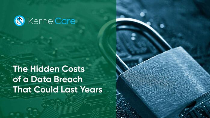 The Hidden Costs of a Data Breach That Could Last Years